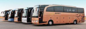 SAPTCO VIP buses