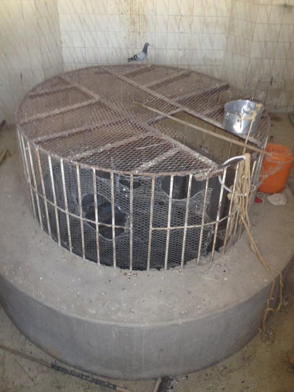Well of Tuwa